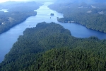 survol Great bear Rainforest 0009 1690